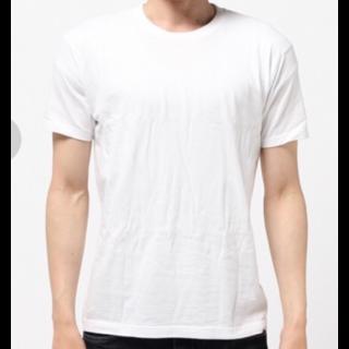 HanesのTシャツ/カットソー