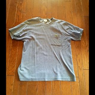 このコーデで使われているLACOSTEのTシャツ/カットソー[ブルー]