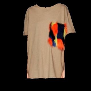 このコーデで使われているZARAのTシャツ/カットソー[キャメル]