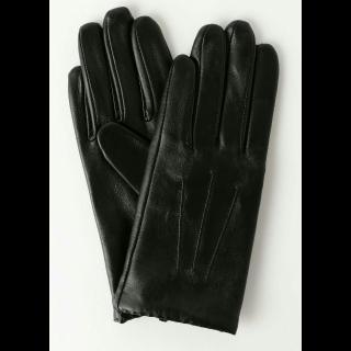 不明の手袋