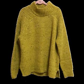 Sportsgirlのニット/セーター
