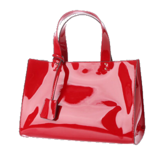 DAIANAのハンドバッグ