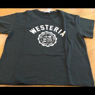 このコーデで使われているTシャツ/カットソー[グレー]