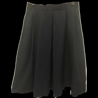BLISS POINTのフレアスカート