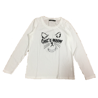 SOMETHING EDWINのTシャツ/カットソー