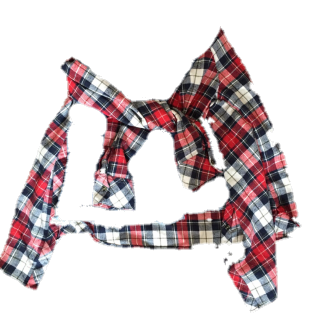a.g.plusのシャツ/ブラウス