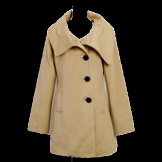 不明のPコート