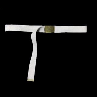 このコーデで使われているダイソーのベルト[ベージュ/ゴールド]