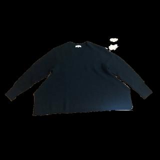 このコーデで使われているPLSTのニット/セーター[ブラック]
