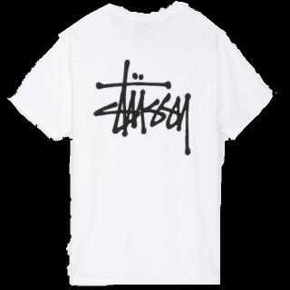 STUSSYのTシャツ/カットソー